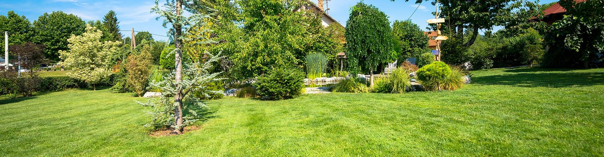 Garden Clearance Milton Keynes